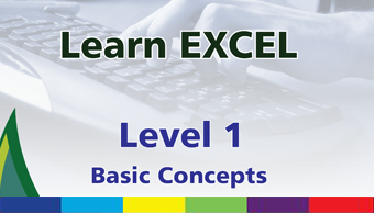 Order Learn MS Excel: Level 1 Basic Concepts