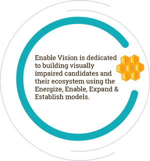 Enable Vision is dedicated to building visually impaired candidates and their ecosystem using the Energize, Enable, Expand & Establish models