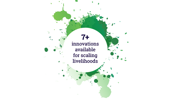 7+ innovations available for scaling livelihoods