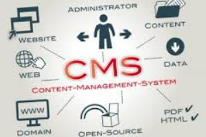 11 - Content Management Systems (CMS)